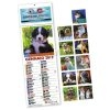CALENDARIO-OLANDESE-MINI-ILLUSTRATO-CANI-E-GATTI-601-FI